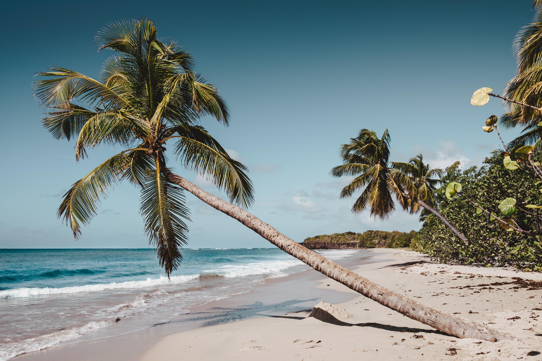 Martinique-top5-kitesurf