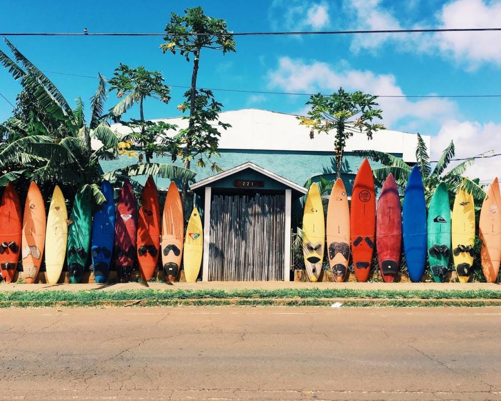 spot surf